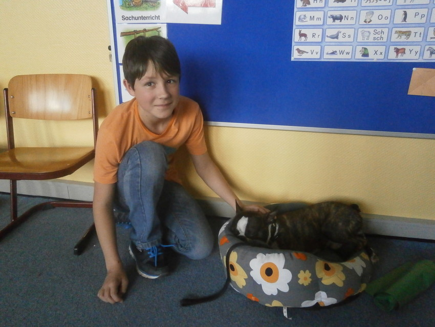 Junge mit Hund im Körbchen